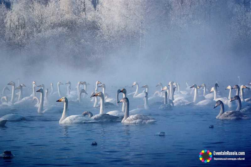 Праздник «Алтайская зимовка 2018»