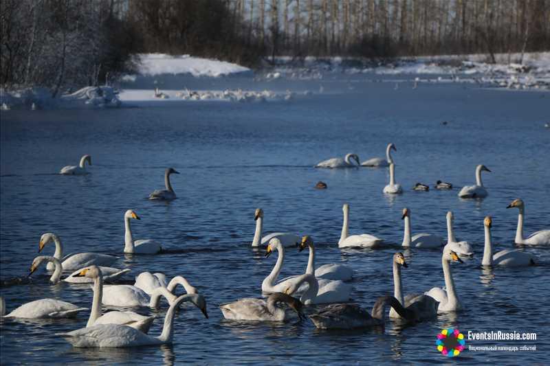 Стали известны даты проведения 'Алтайской зимовки'