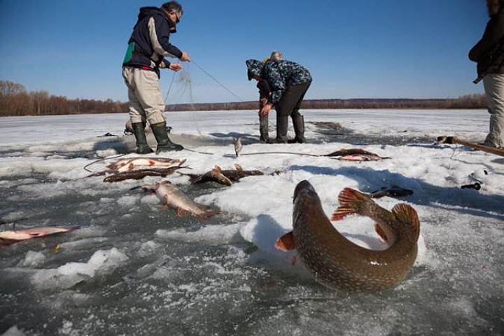 рыбалка в волгограде в марте